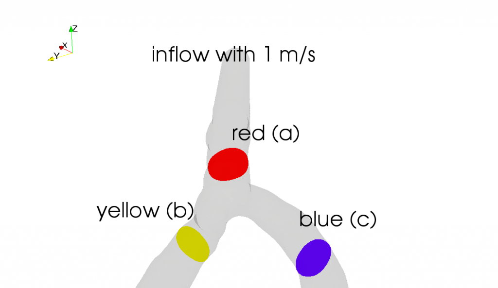 At which place the blood flow reaches the highest velocity? Is it (a), (b), or (c)?