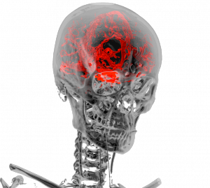 3D virtual model of human body created from Computed Tomography (CT) image