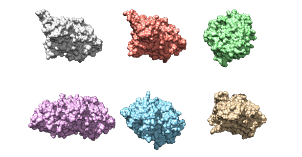 The six kinase structures that will be used as a data set for the project.