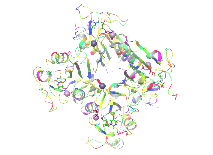 My enzyme is ready for further steps!