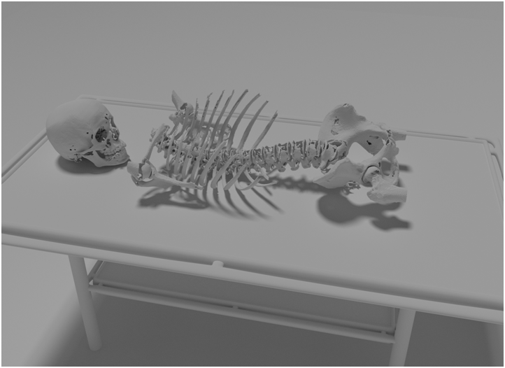 Visualization of real motion of human body based on motion capture technology