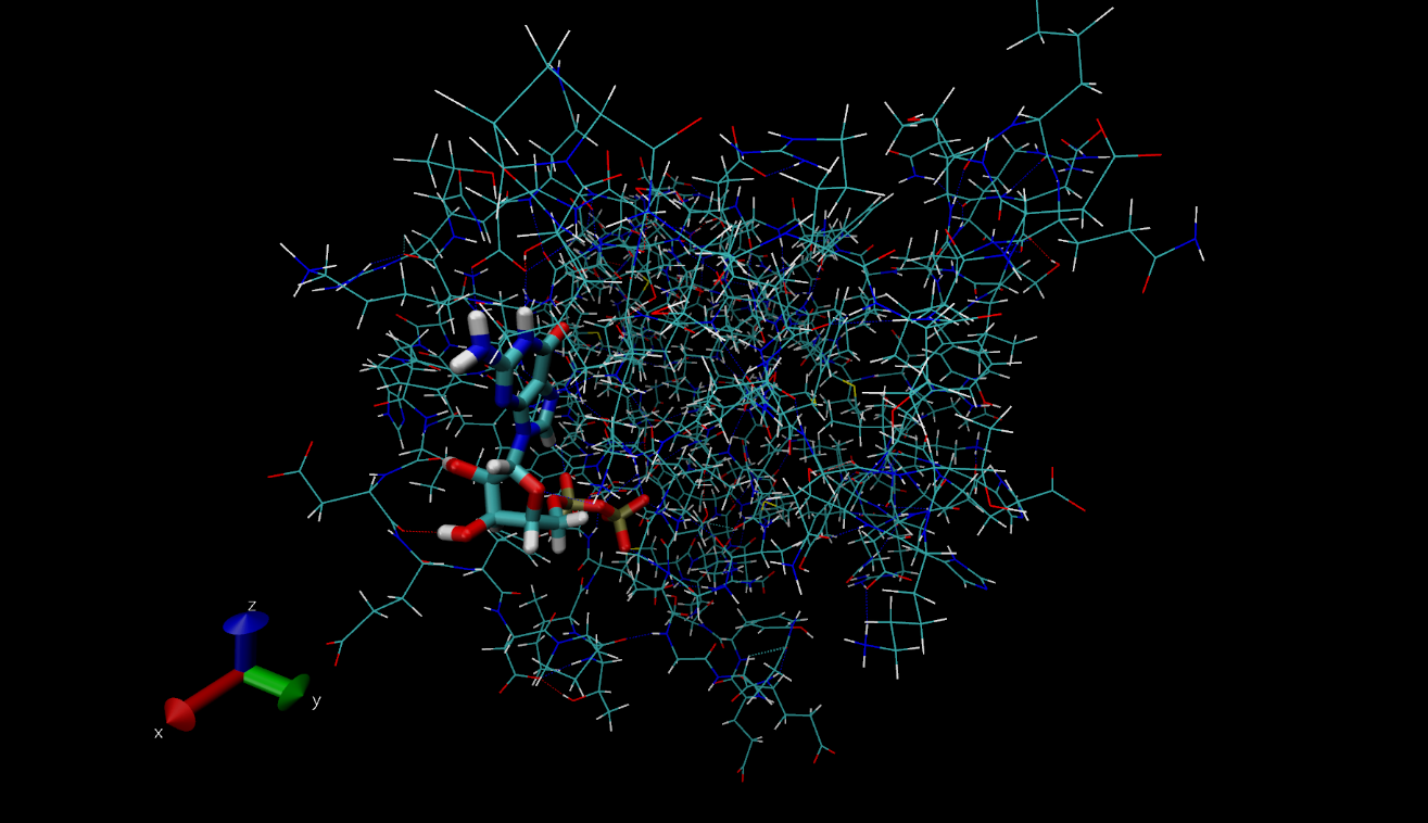 Can a theoretical physicist love biochemistry? (Spoiler: YES!)
